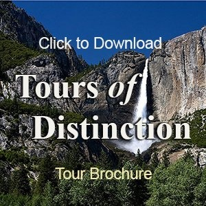 Vegas Locals Tours